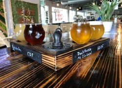 A Look at the Newest Houston Brewery: Senate Avenue Brewing Company